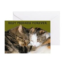 BFF Cats Snuggling Greeting Card