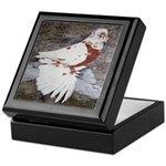 Pageant Champion Pigeon Keepsake Box