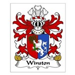 Winston Family Crest Small Poster