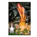 MidEve Sheltie (S) Postcards (Package of 8)