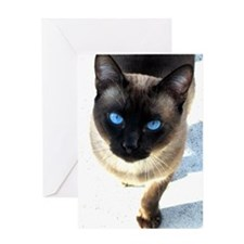 Siamese cat - Greeting Card