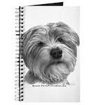 Biscuit, Shih Tzu-Terrier Journal