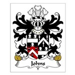 Johns Family Crest Small Poster