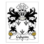 Cylynin Family Crest Small Poster