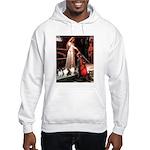 Accolade / 3 Shelties Hooded Sweatshirt