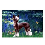 Lilies / Chinese Crested Postcards (Package of 8)
