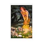 Fairies / Tibetan Spaniel Sticker (Rectangle)