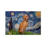 Starry Night / Vizsla Rectangle Magnet (10 pack)