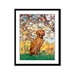Spring / Vizsla Framed Panel Print