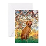 Spring / Vizsla Greeting Cards (Pk of 10)