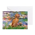 Lilies / Vizsla Greeting Cards (Pk of 10)