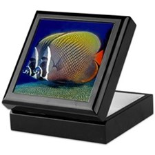 Red-tailed Butterfly Fish Keepsake Box