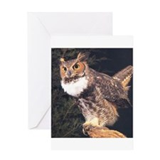 Cool Barn owl Greeting Card