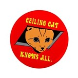 "Ceiling Cat 3.5"" Button"