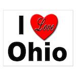 I Love Ohio Small Poster