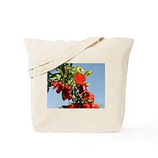 Pomegranate Blossom Tote Bag
