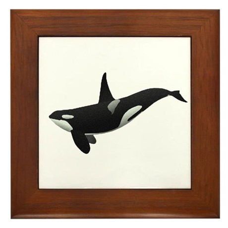 Orca Framed Tile