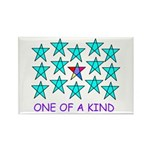 ONE OF A KIND Rectangle Magnet