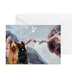 Creation / Briard Greeting Cards (Pk of 10)
