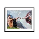 Creation / Briard Framed Panel Print