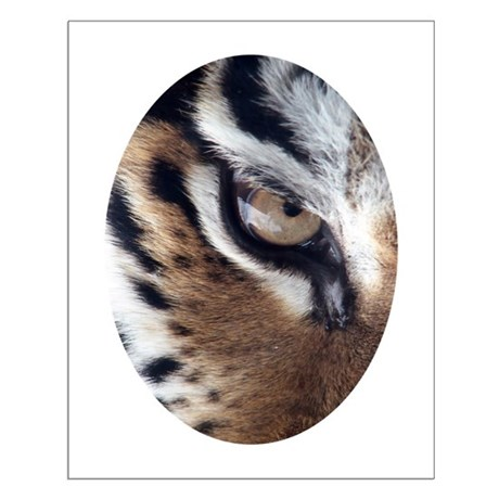 Tiger Eye Small Poster