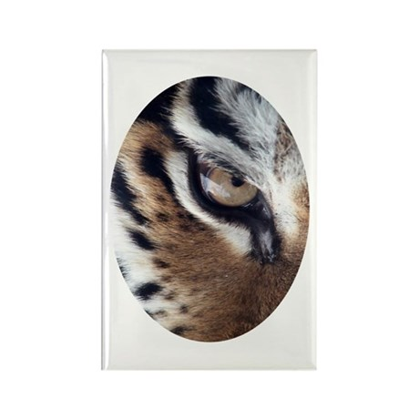 Tiger Eye Rectangle Magnet (100 pack)