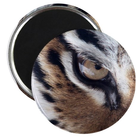 "Tiger Eye 2.25"" Magnet (100 pack)"