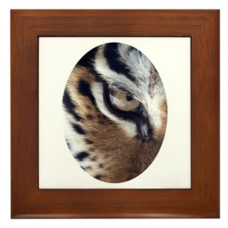 Tiger Eye Framed Tile