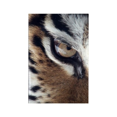 Tiger Eye Rectangle Magnet (10 pack)