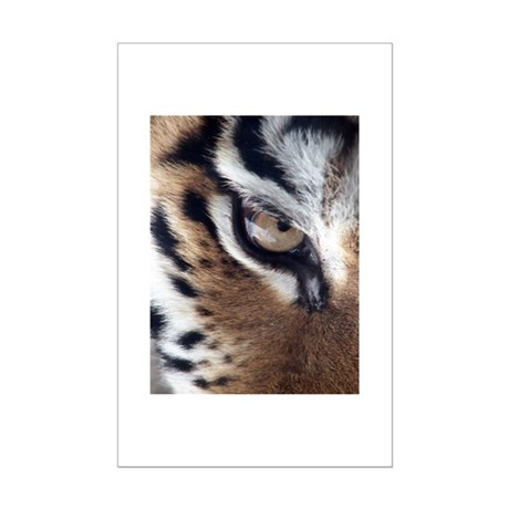 Tiger Eye Mini Poster Print