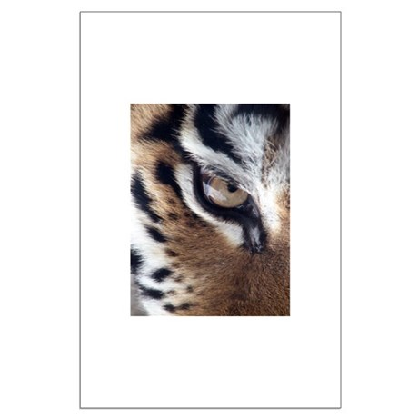 Tiger Eye Large Poster