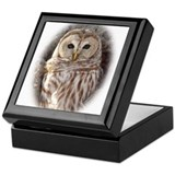 Cool Owl Keepsake Box