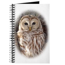 Cute Barred owl Journal