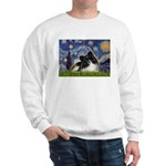 Starry Night / Pomeranian (b&w) Sweatshirt