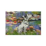 Lilies / Dalmation Rectangle Magnet