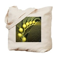 Kelp Bulbs Tote Bag