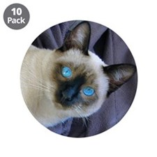 "3.5"" Button (10 pack) - Sam, the Siamese cat"