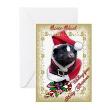 Santa Skunk Greeting Cards (Pk of 10)