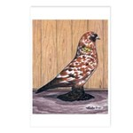 Tortoiseshell West Postcards (Package of 8)