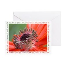 Poppy Thank You Greeting Card