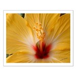 Hibiscus Small Poster