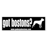 Got Bostons? Bumper Car Sticker