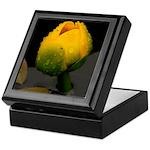 Pond Lilly  Keepsake Box