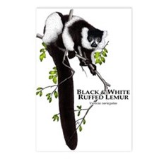 Black & White Ruffed Lemur Postcards (Package of 8