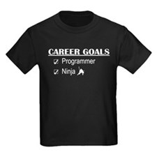 Programmer Career Goals T