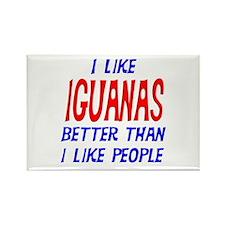 I Like Iguanas Rectangle Magnet