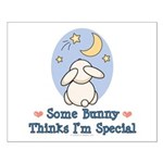 Some Bunny Special Small Poster