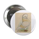 Indigo Tumbler Pigeon 2.25