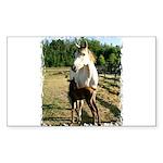 BEAUTIFUL HORSES Rectangle Sticker