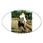 BEAUTIFUL HORSES Oval Sticker